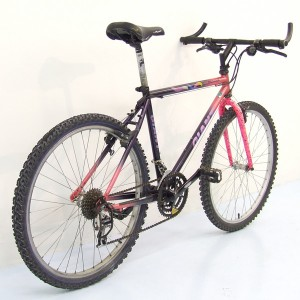 Giant Coldrock MTB